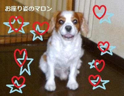 2012_0824_091814-P1140650.jpg