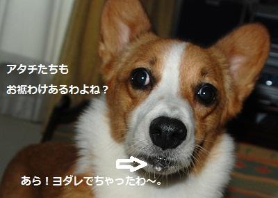 2012_0901_140422-DSC_1081.jpg
