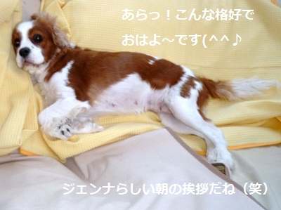 2012_0911_093702-P1140819.jpg