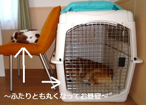 2012_0911_151804-P1140856.jpg