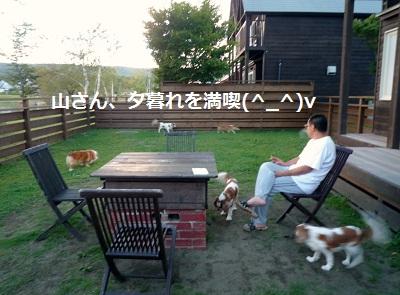 2012_0911_173821-P1140863.jpg
