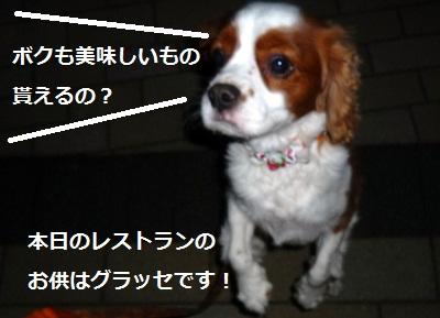 2012_0911_183220-P1140867.jpg