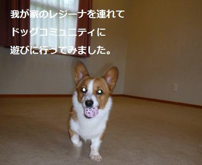 2012_0912_151327-P1140953.jpg
