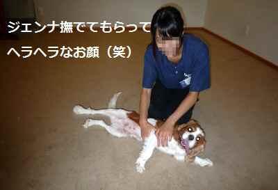 2012_0912_154059-P1140964.jpg