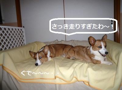 2012_1006_165817-P1150028.jpg