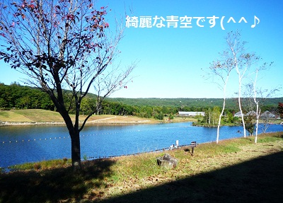 2012_1008_075251-P1150197.jpg