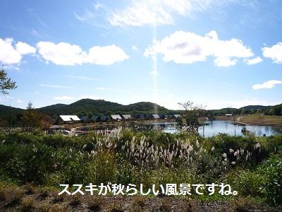 2012_1008_093220-P1150206.jpg