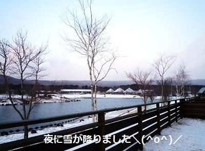 2012_1223_074901-P1150430.jpg