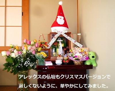 2012_1224_140023-P1150460.jpg