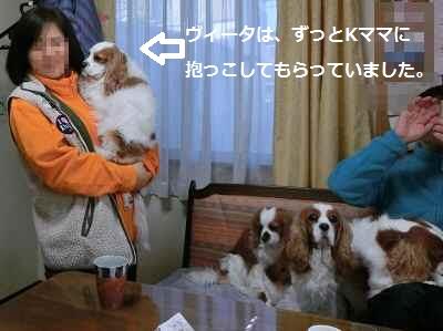 2013_0105_153814-CIMG0042.jpg