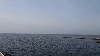 今日の東京湾