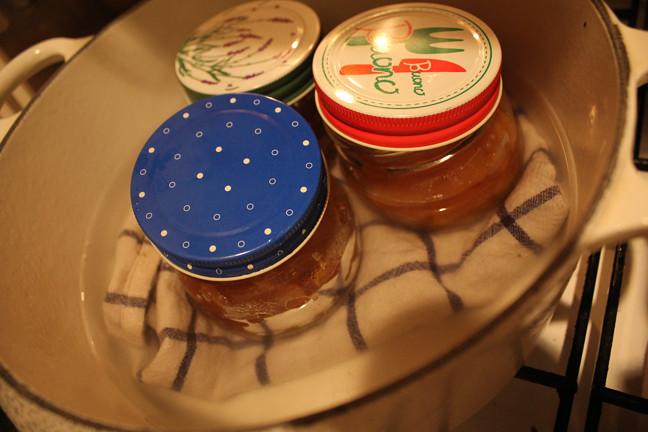 こじこdeこじこ チワワ・手作りパン・手作り石鹸・手作りお菓子・DIY・ガーデニング・ちわわの動画・薪ストーブ