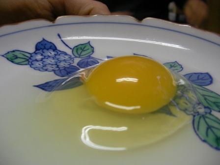 卵産まれました (11)burogu