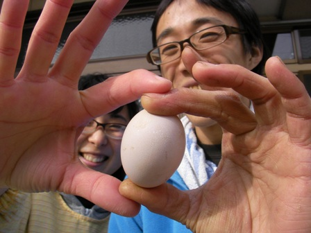 卵産まれました (5)ぶろぐ