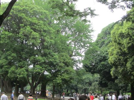 上野の森0001