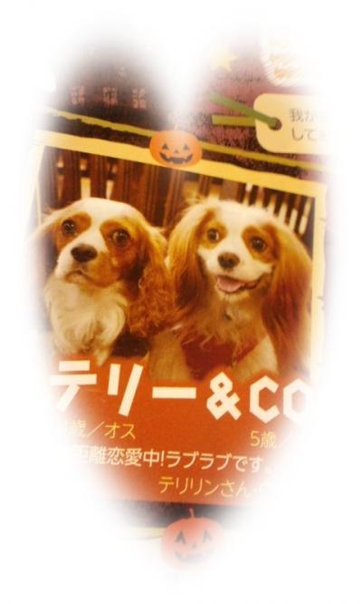 121105_2240+01-繝上・繝・convert_20121108094052