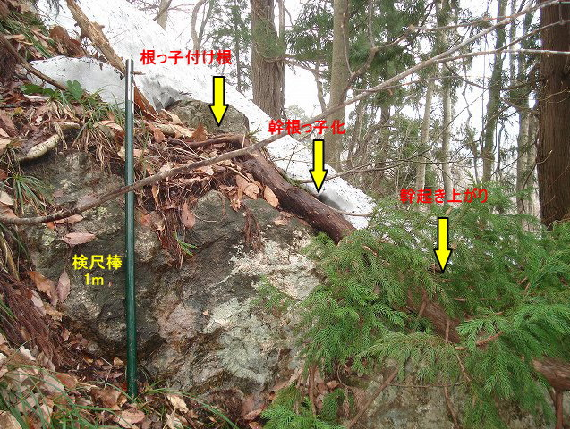 MB7-4.jpg