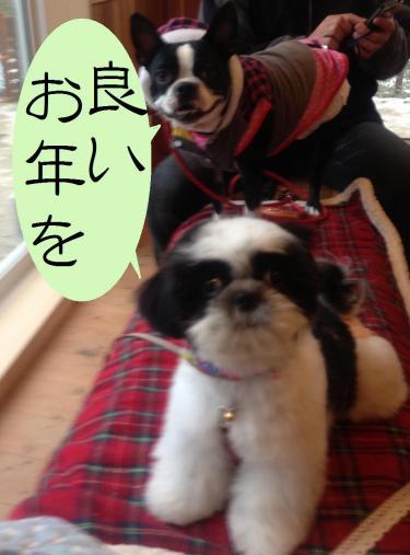 蜀咏悄_convert_20121231195644