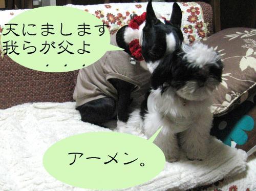 IMG_0862_convert_20121228133613.jpg