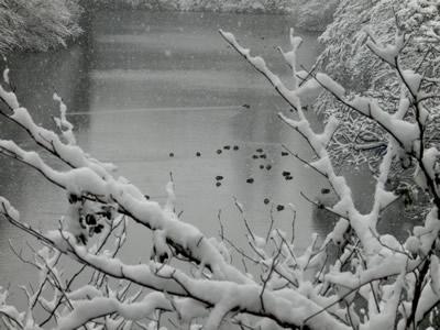 2014-01_27_02.jpg