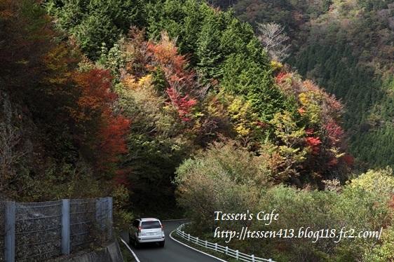 IMG_8105 - コピー (2)