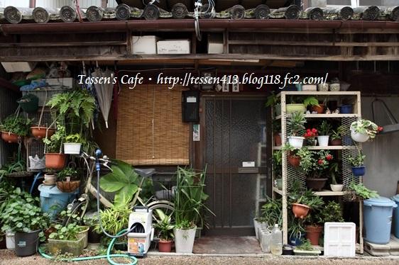 IMG_7290 - コピー