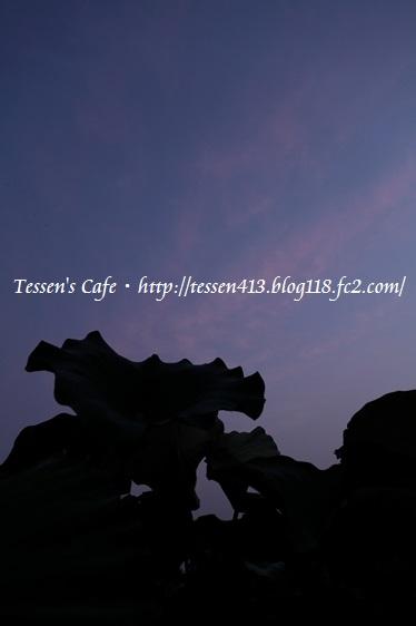 IMG_8612 - コピー
