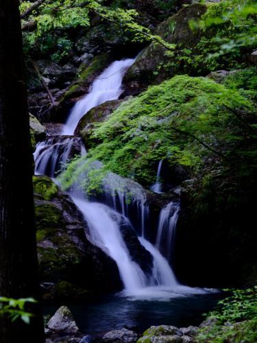 うぐいす滝2s
