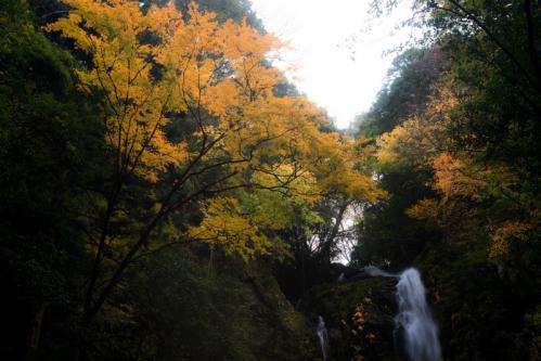 雨乞いの滝7s