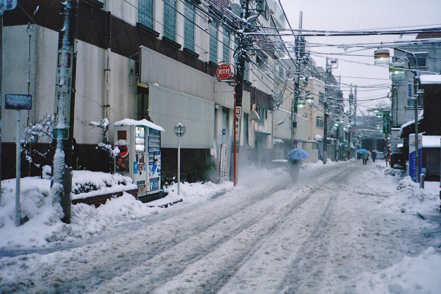shimakou_0001_2.jpg