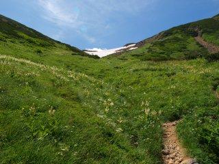 s06岩苔乗越への登り5