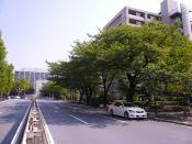 hazakurahigashi.jpg
