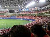 natuyasumi201310.jpg