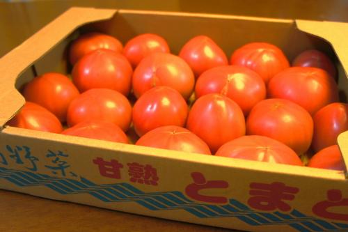 tomato07188_20120618224520.jpg