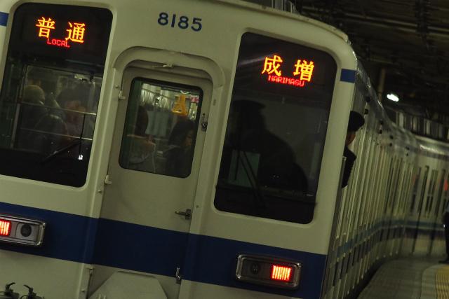 IMGP4610a.jpg