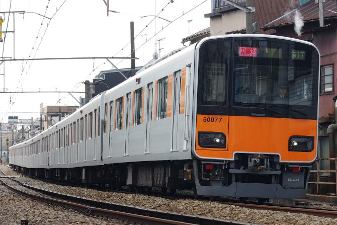 IMGP8421a.jpg