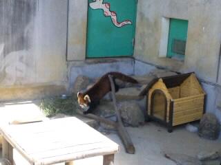 moblog_959ed7a1.jpg