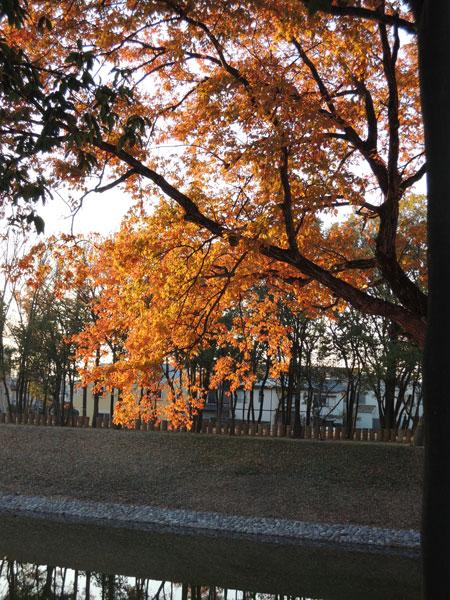 2012-12-12_朝日_2353