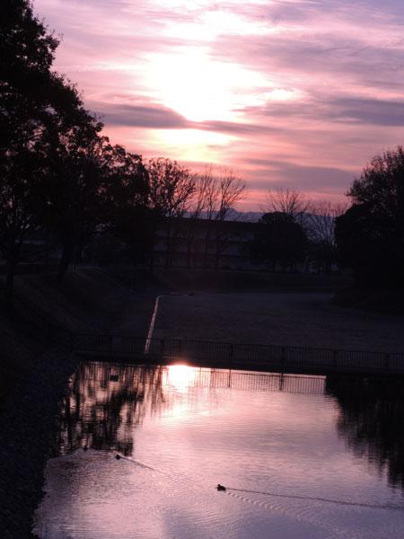 2012-12-14_朝日_2328