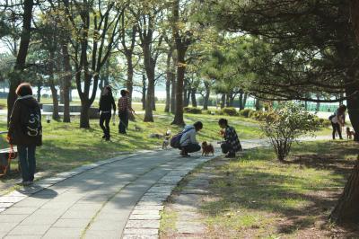 shiokaze118-21.jpg