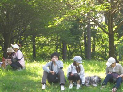 tsukuba-5-19-15.jpg