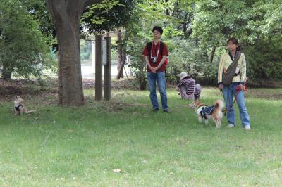 zenkilastshiokaze-11.jpg