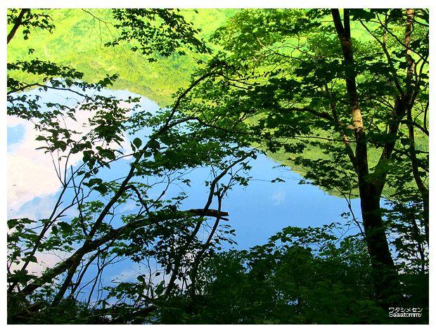 木と山と空と池