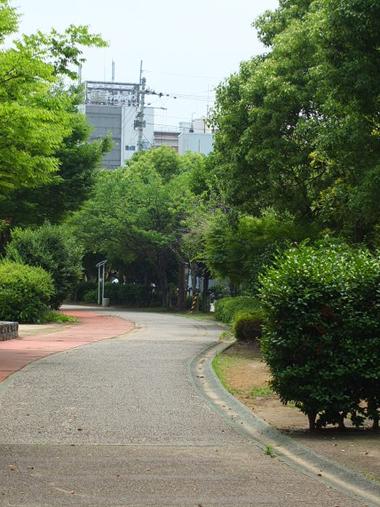 5小松島線跡0622