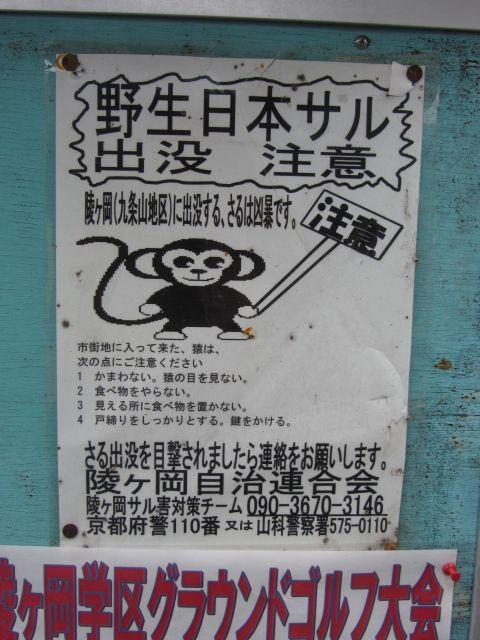 日ノ岡峠旧道にて