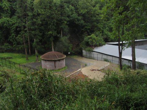 琵琶湖硫水第一竪坑