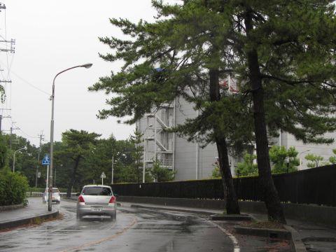 粟津の松並木跡