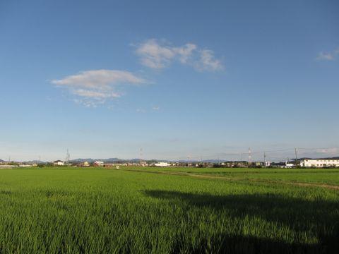 泉の田園風景