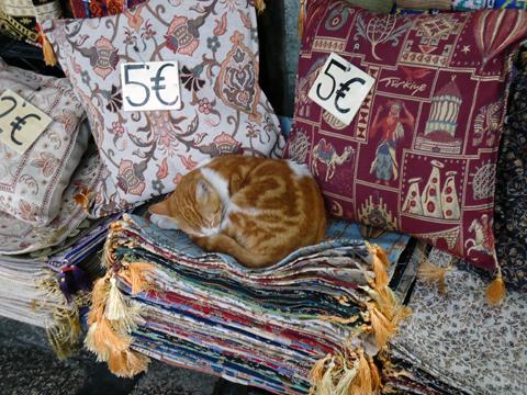 istanbul cat-1