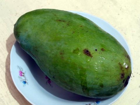 fruits2013_mango-taymur02sep